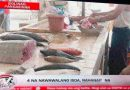 Nawawalang Isda, China, Plane Crush – TV Booboos